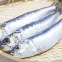 Cenbless 成増フェイシャル&ネイルサロン 【栄養素の働き】ビタミンB2の働き