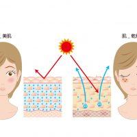 Cenbless 成増フェイシャル&ネイルサロン 素肌内部の潤い不足にご用心!夏こそ保湿☆