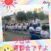娘の中学校初の春の運動会☆