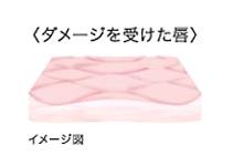 Cenbless 成増フェイシャル&ネイルサロン リップケア