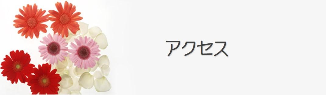 アクセス ~Cenbless 成増フェイシャル&ネイルサロン