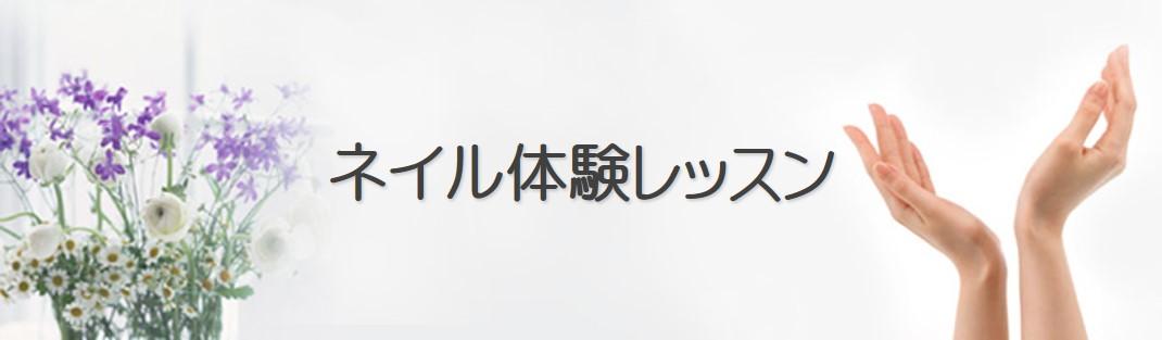 ネイル体験レッスン ~Cenbless 成増フェイシャル&ネイルサロン
